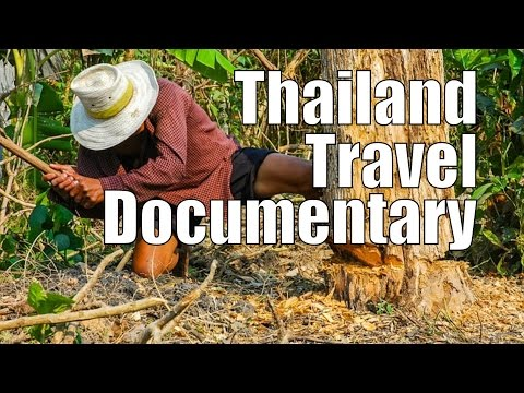 Thailand Travel Documentary  Real Life Footage from a Remote Thai Village, Everyday Scenes