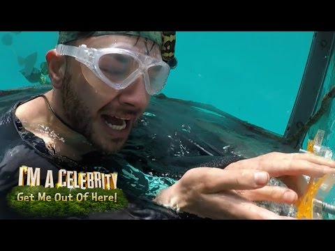 Adam & Danny Battle Underwater Creatures! | I'm A Celebrity...Get Me Out Of Here!