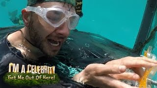 Adam & Danny Battle Underwater Creatures!   I