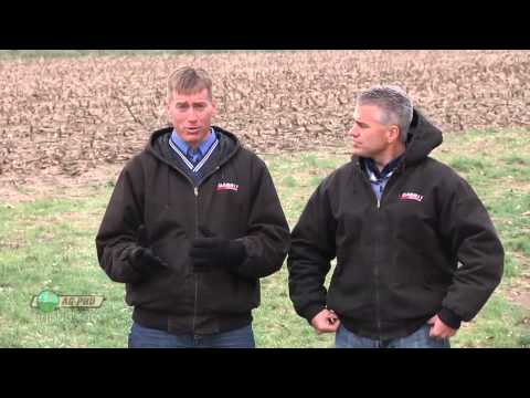 Farm Basics #823 - Cash vs Share Rent (Air Date 1/12/14)