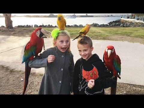 Holding Parrots on a Fun Family Outing || Mommy Monday