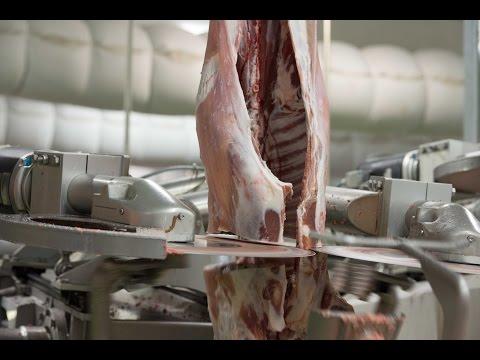 Automated Robotic Lamb Boning Room - SCOTT