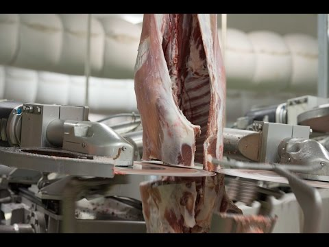 Automated Robotic Lamb Boning Room – SCOTT