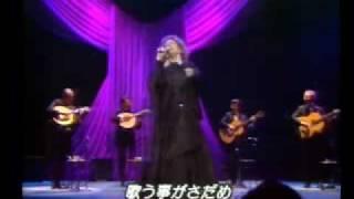 """Coliseu-Amália Rodrigues-"""" Que Deus Me Perdoe """"-50 anos De Carreira"""