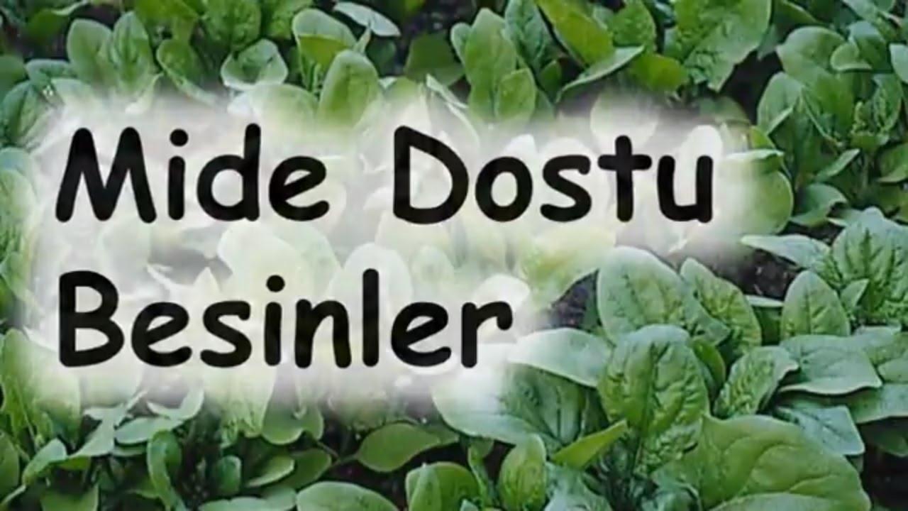 Romatizmaya iyi Gelen Bitkiler Gıdalar Yiyecekler
