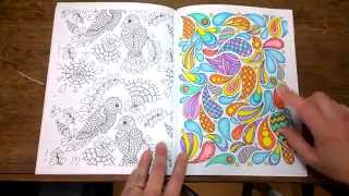 The Art of Mindfullness Colouring book. Finished pages, tips and walk through.