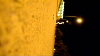 Глазами Сбитой Собаки (Короткометражный фильм)
