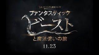 映画『ファンタスティック・ビーストと魔法使いの旅』特報【HD】2016年11月23日公開