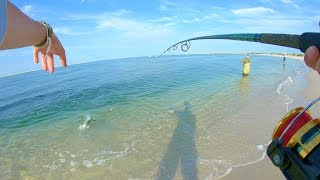 This Toothy Saltwater BEAST ATTACKED MY BAIT!! (** Long Island's South Shore Surf Fishing **)
