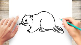 How to Draw a Beaver Step by Step for Kids