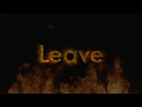Leave-Post Malone||Lyrics