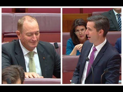 Aussie senator who blamed Muslims for NZ mosque attack slammed in parliament