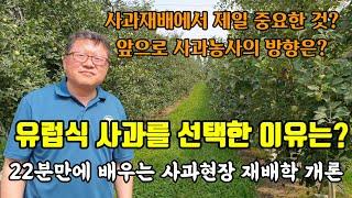 [은성와이너리 5-3]유럽식 사과재배를 선택한 이유, …