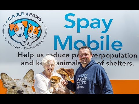 A Mobile Vet Clinic That Brings Free And Low-cost Services To Pet Owners In Need!