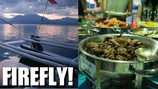 Philippines Travel: MUST DO in Palawan: FIREFLY WATCHING!