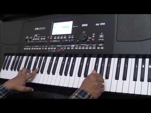 Tere Liye VEER-ZAARA Instrumental on keyboard by Dipankar