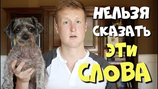 Говорите как красавчик на английксом языке! | Топ-ошибки русскоговоряших!