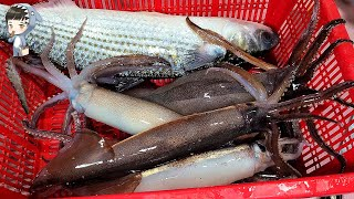 Assorted Seafood Sashimi Songd…