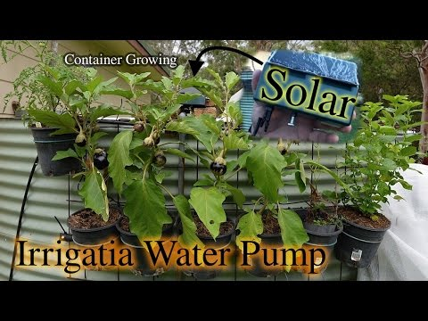 Irrigatia Solar Watering Pump for Container Growing