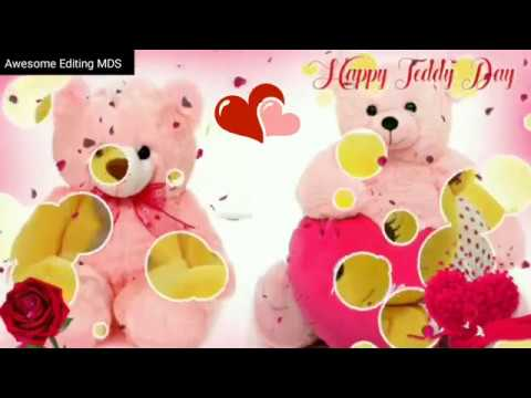 10 February Teddy Day Valentines Day Special Whatsapp status video ...