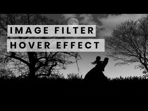 CSS Image Filter Hover Effect | Quick CSS Tutorial thumbnail