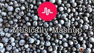 Musically Mashup | Musically Queen and king