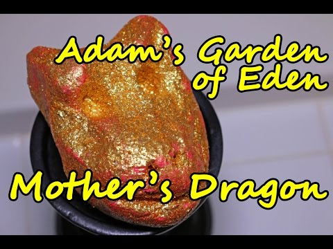 Adam's Garden of Eden - Mother's Dragon Bubble Bar - DEMO - Review