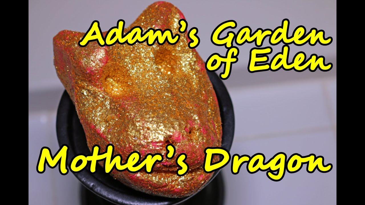 Adam\'s Garden of Eden - Mother\'s Dragon Bubble Bar - DEMO - Review ...