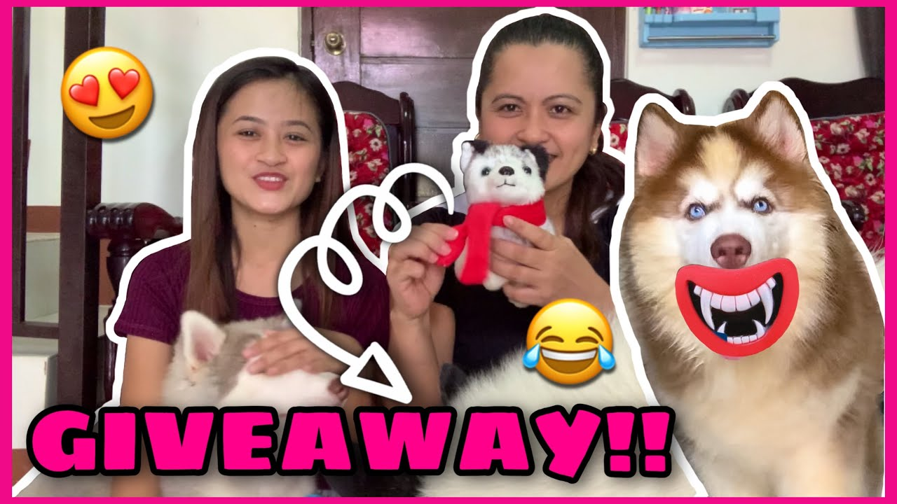 GIVEAWAY ALERT! | Unboxing Pet Products From Shopee And Lazada! | Husky Pack TV