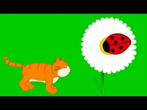 Машины сказки - Ужин для Котенка - мультфильмы для детей