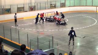 What A Save! (Ball Hockey Skills - Ryan O