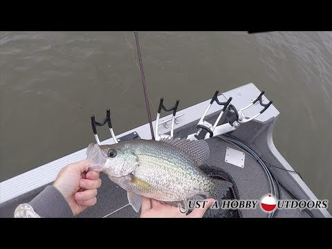 Lake Wateree, SC Fishing: Crappie And Stripers 10-27-2018