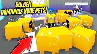 Using TONS OF GOLDEN DOMINUS HUGE PETS IN PET SIMULATOR!! *RAREST PET* (Roblox)
