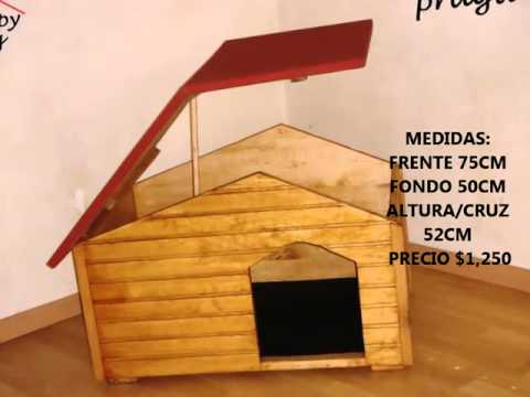 Como hacer casas para perros big youtube - Ideas para construir una casa ...