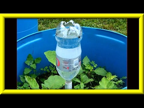 Soda Bottle Watering System For Growing Plants In Containers