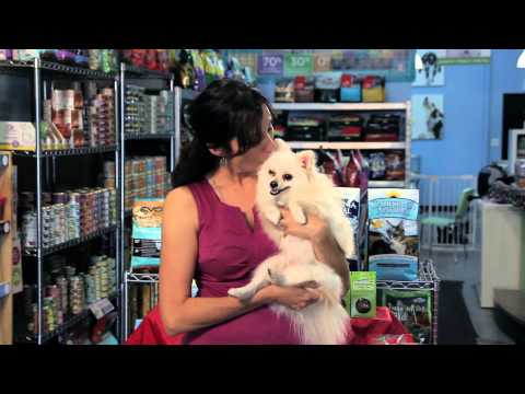 Backpacks to Carry Dogs : Dog Tips & Tricks