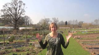 Introducing the Green Party Candidate for the Totnes Constituency - General Election 2015