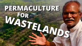 India's Water Revolution #4: Permaculture for Wastelands at Aranya Farm