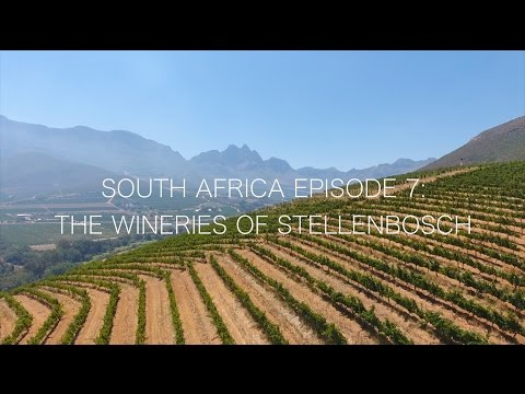 South Africa Episode 7: The Wineries of Stellenbosch