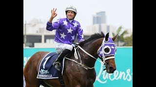 2020 Magic Millions National Broodmare Sale - The Invincibella Story