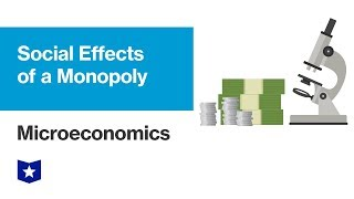Social Effects of a Monopoly | Microeconomics