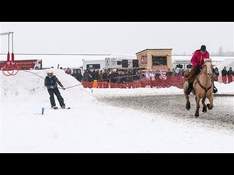 Skijoring: The Wildest Winter Sport You've Never Heard Of