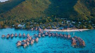 Discover Hilton Moorea Lagoon Resort & Spa