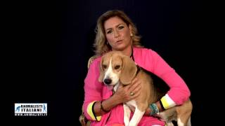 www.animalisti.it - SPOT ROMINA POWER - NO SPERIMENTAZIONE