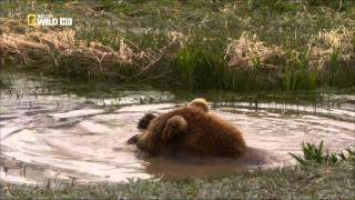 Ruská divočina - Kamčatka