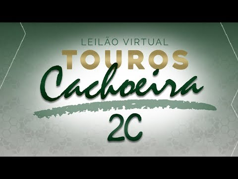 Lote 08 (2753/17 Cachoeira 2C - GCID 2753)
