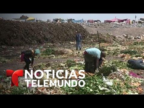 Así viven los recolectores de basura en México   Noticias   Noticias Telemundo