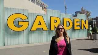 Boston History in a Minute: Boston Garden