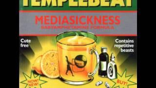 Templebeat - Brain Cult Of Macho Irony (Swamp Terrorists Remix)