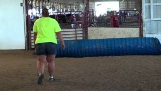 Sydney And Rosie Tackle The Agility Course At The 2013 Kc Expo Fair